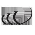 Widnes Vikings logo